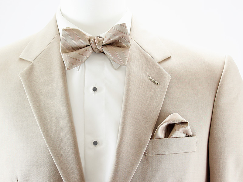 Allure Stripe Bow Tie and Pocket Square